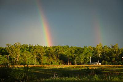 rainbowtrailer