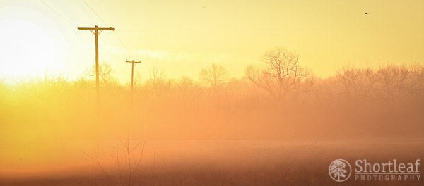 week3-sunrise