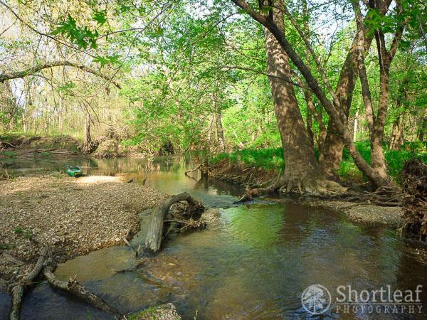 center creek-2
