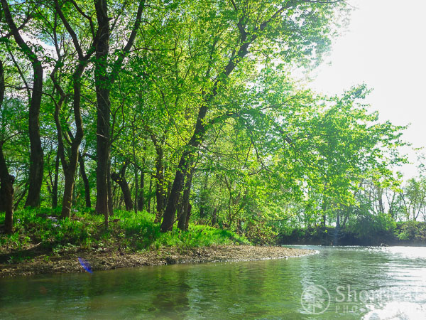 center creek-4