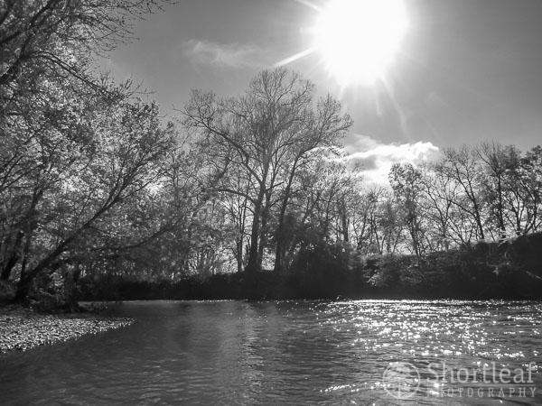 center creek-5