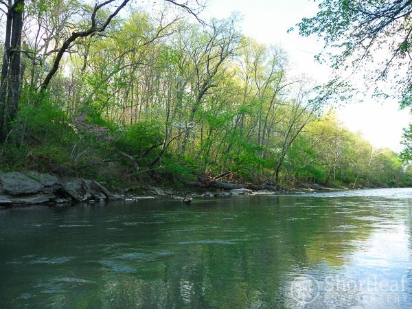 center creek-6