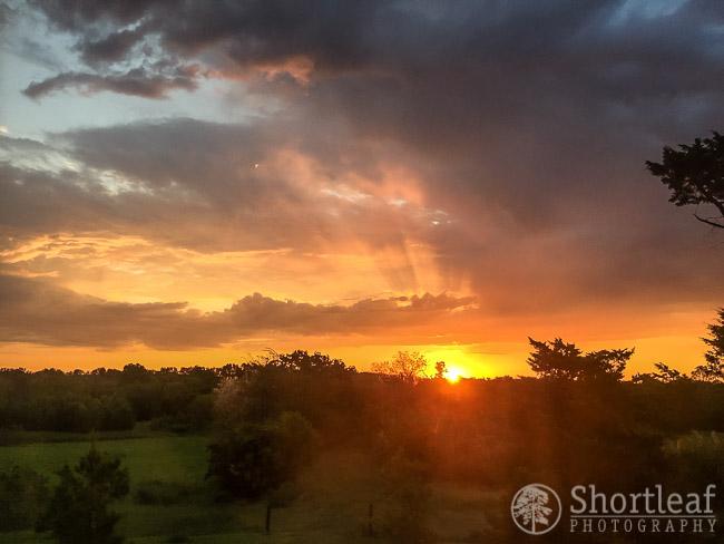 sunrise at the farm-1