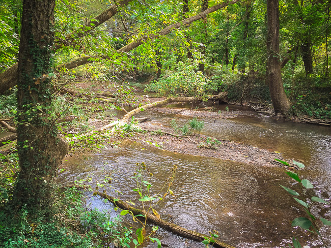 Several parts of the trail ride along Spring River or in this case, a small side fork of the river.  Here is a view from the trail that I particularly enjoyed.