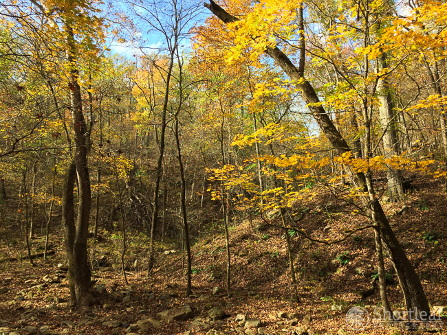 Not particularly a great photo, and I took it with my phone, but still a pretty scene in the Ozarks from last weekend.