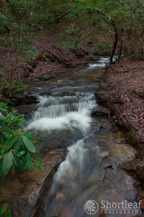 fall creek falls trail